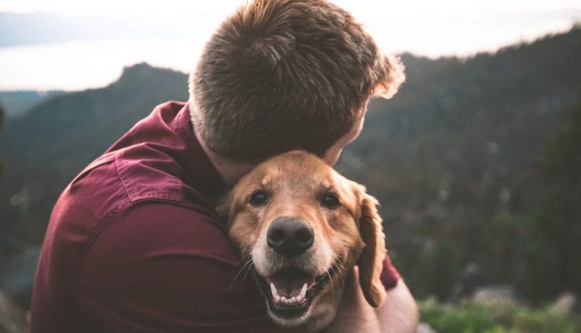 Man hugging labrador retriever
